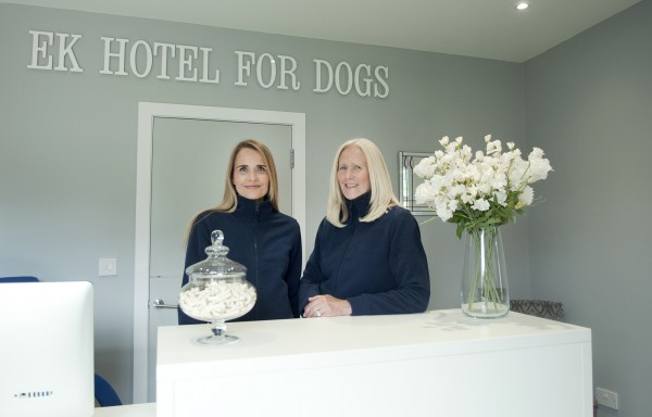 EK Hotel For Dogs - team